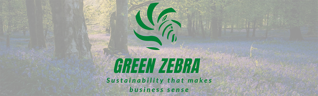 Introducing Green Zebra: Your new sustainable business partner